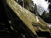 Iwamura1